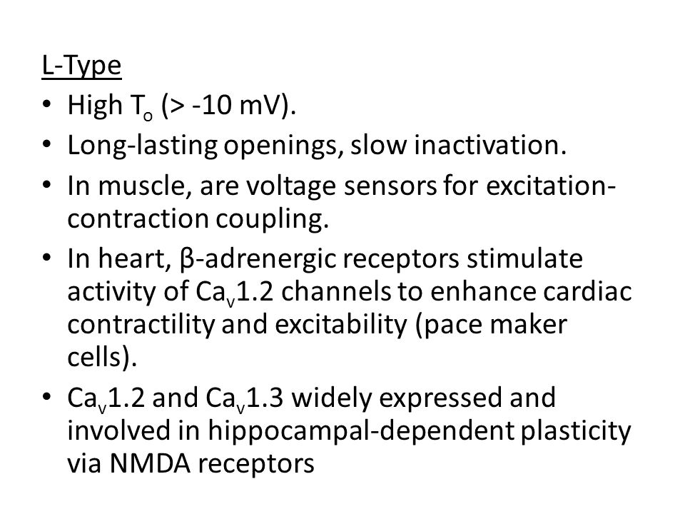 L-Type High T o (> -10 mV). Long-lasting openings, slow inactivation. In muscle, are voltage sensors for excitation- contraction coupling. In heart, β