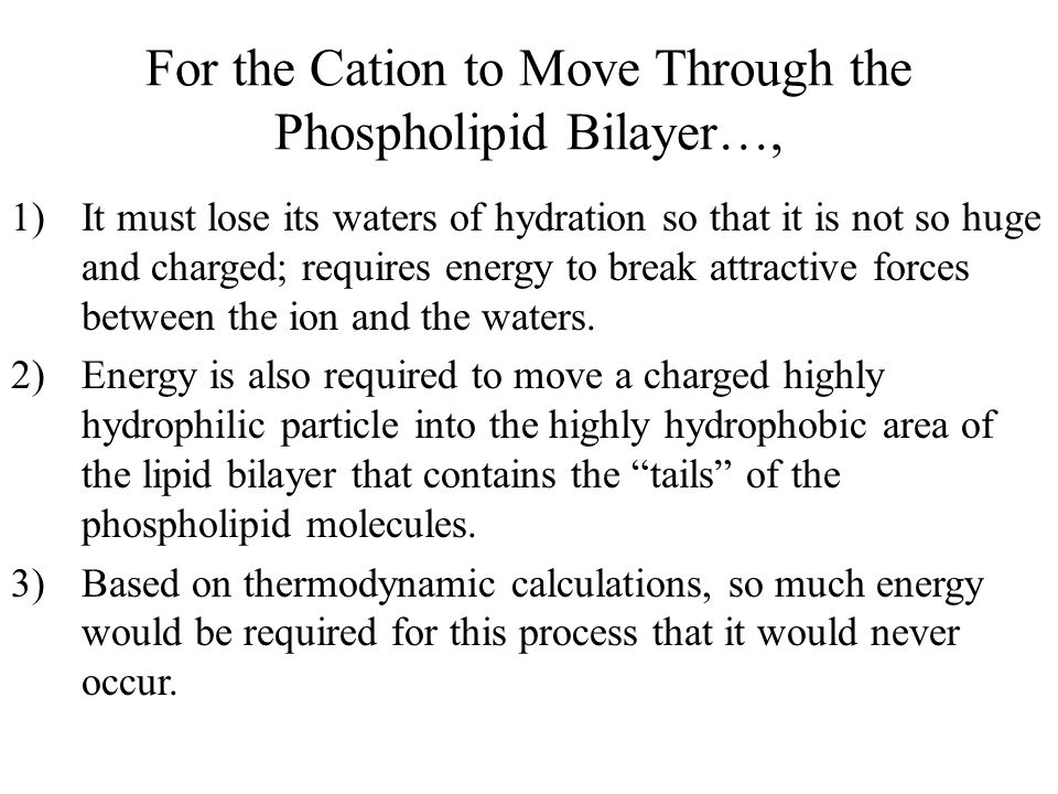 For the Cation to Move Through the Phospholipid Bilayer…, 1)It must lose its waters of hydration so that it is not so huge and charged; requires energ