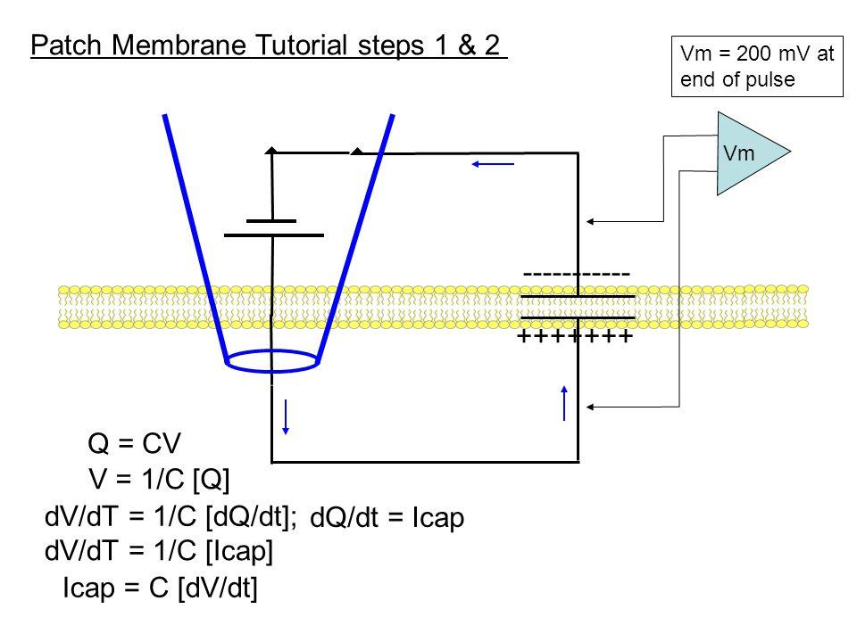 Patch Membrane Tutorial step 3: add leak channel r leak c Vm 12 t