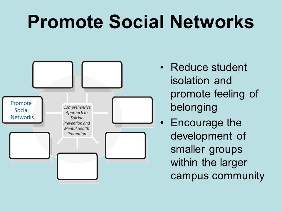 Promote Social Networks Reduce student isolation and promote feeling of belonging Encourage the development of smaller groups within the larger campus community