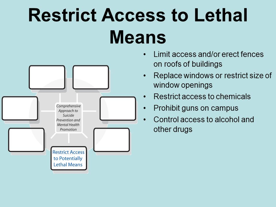 Restrict Access to Lethal Means Limit access and/or erect fences on roofs of buildings Replace windows or restrict size of window openings Restrict access to chemicals Prohibit guns on campus Control access to alcohol and other drugs