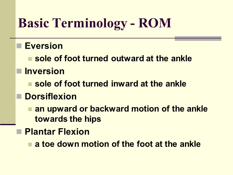 Basic Terminology - ROM Eversion sole of foot turned outward at the ankle Inversion sole of foot turned inward at the ankle Dorsiflexion an upward or backward motion of the ankle towards the hips Plantar Flexion a toe down motion of the foot at the ankle