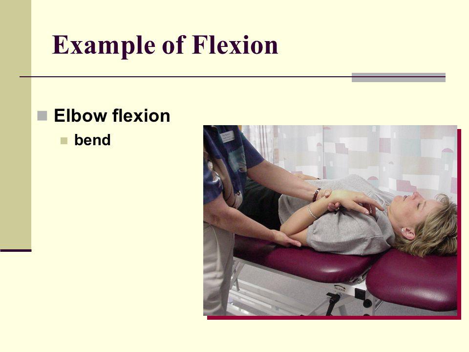 Example of Flexion Elbow flexion bend