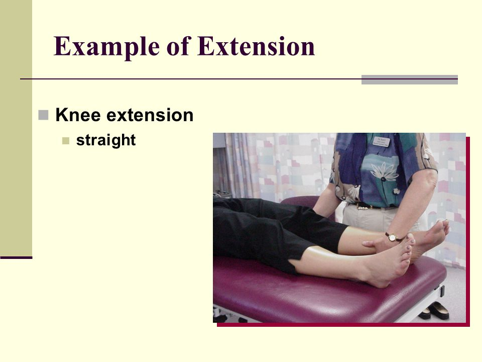 Example of Extension Knee extension straight