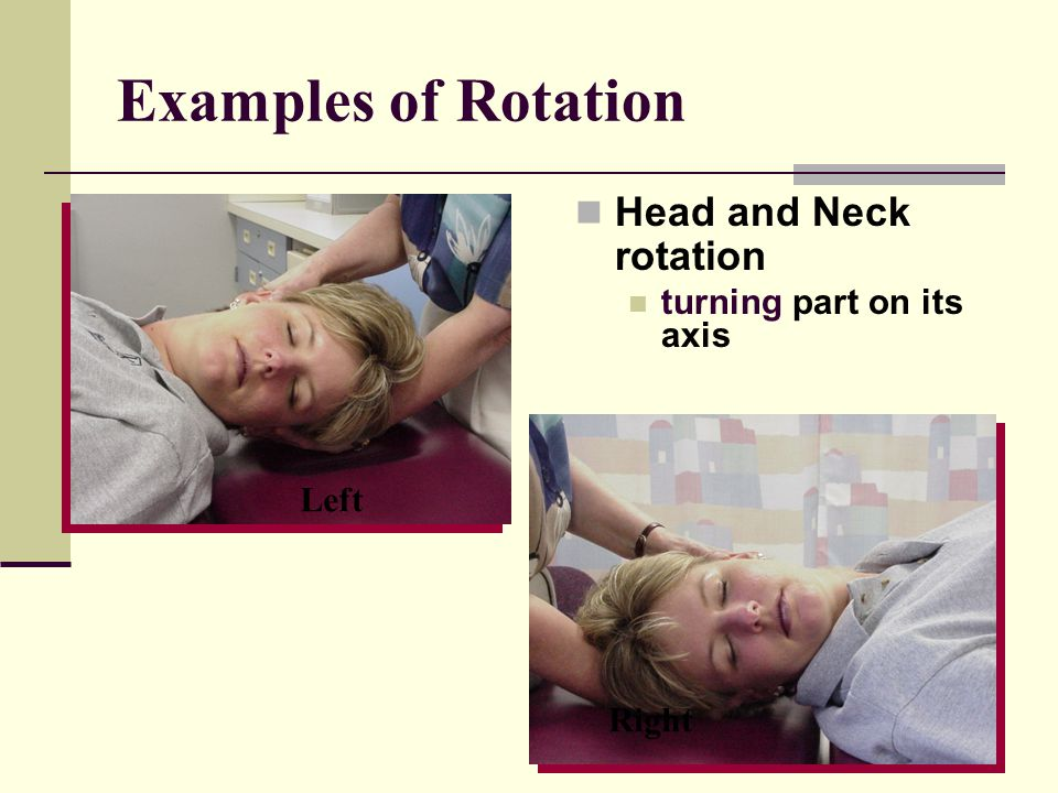 Examples of Rotation Head and Neck rotation turning part on its axis Left Right