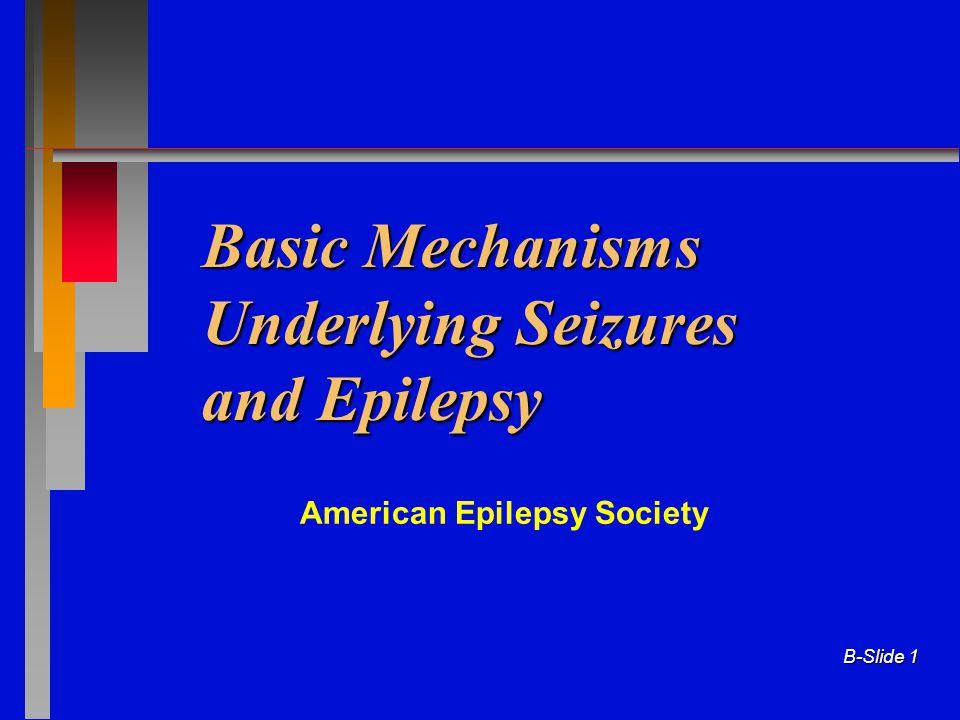 B-Slide 1 Basic Mechanisms Underlying Seizures and Epilepsy American Epilepsy Society