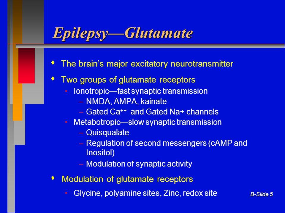 B-Slide 5 Epilepsy—Glutamate  The brain's major excitatory neurotransmitter  Two groups of glutamate receptors Ionotropic—fast synaptic transmission