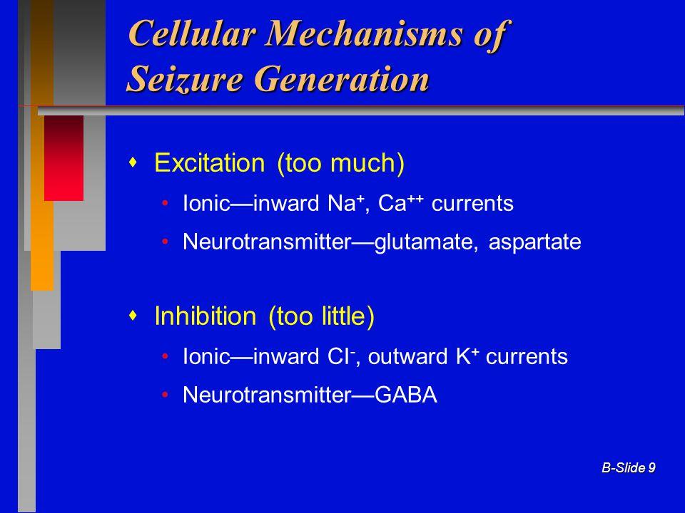 B-Slide 9 Cellular Mechanisms of Seizure Generation  Excitation (too much) Ionic—inward Na +, Ca ++ currents Neurotransmitter—glutamate, aspartate 