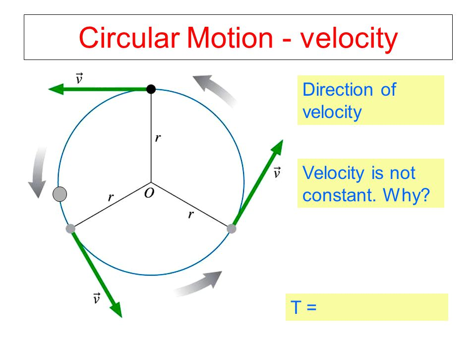 Circular Motion - velocity Direction of velocity Velocity is not constant. Why? T =