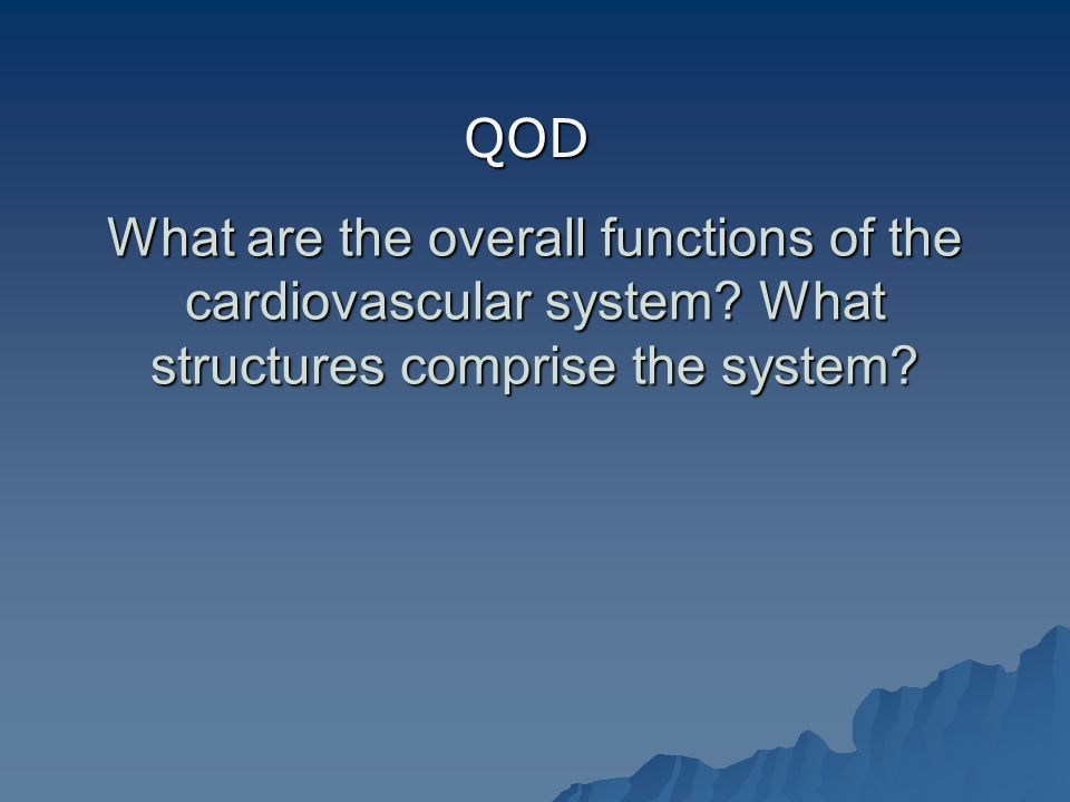 What are the overall functions of the cardiovascular system.