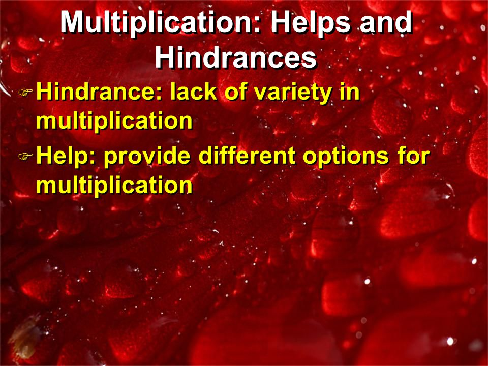 F Hindrance: lack of variety in multiplication F Help: provide different options for multiplication F Hindrance: lack of variety in multiplication F H