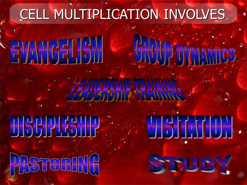 CELL MULTIPLICATION INVOLVES