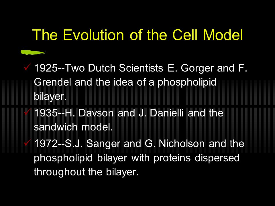 The Evolution of the Cell Model 1925--Two Dutch Scientists E.