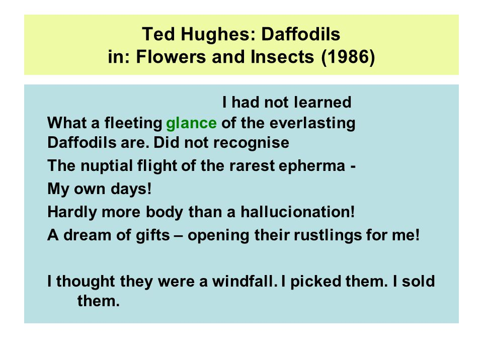 Ted Hughes: Daffodils in: Flowers and Insects (1986) I had not learned What a fleeting glance of the everlasting Daffodils are.