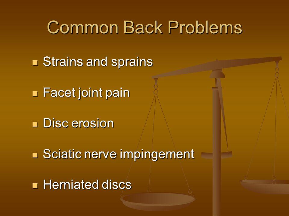 Common Back Problems Strains and sprains Strains and sprains Facet joint pain Facet joint pain Disc erosion Disc erosion Sciatic nerve impingement Sci