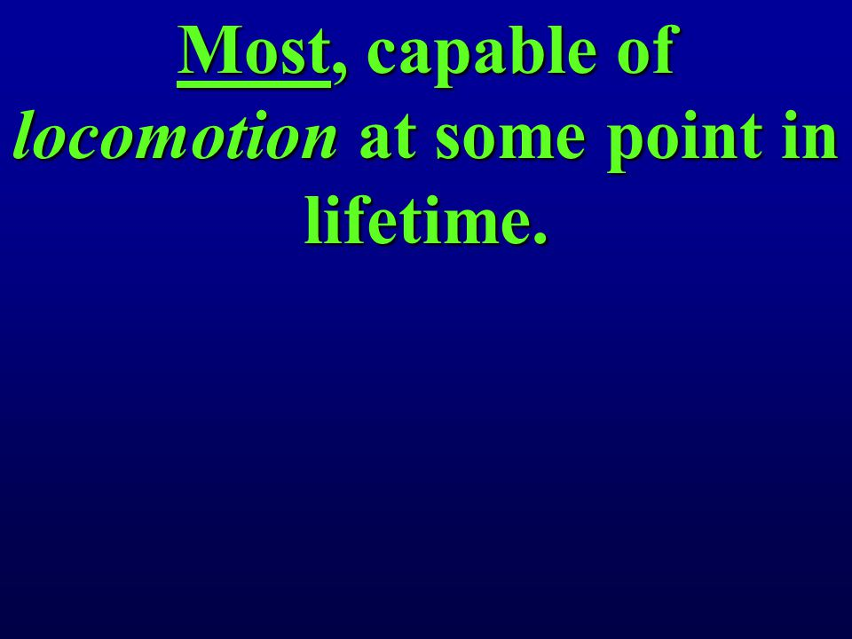 Most, capable of locomotion at some point in lifetime.