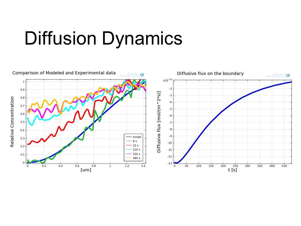 Diffusion Dynamics