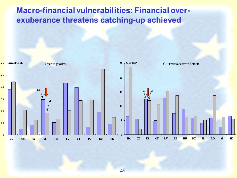 24 Challenges Ahead: Strong dependence of some NMS on foreign loans Strong vulnerability of some OMS vis-à-vis NMS External loans of BIS reporting banks in 2004 and 2008 Claims of selected old Member States on new Member States, 2004-2008