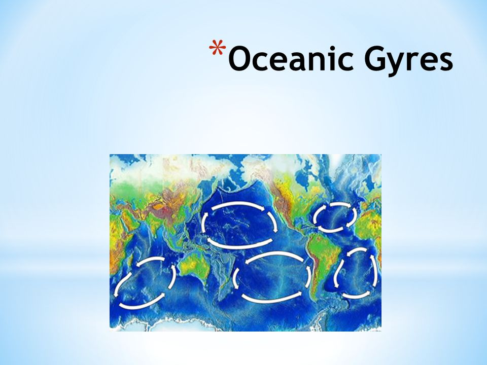* Oceanic Gyres