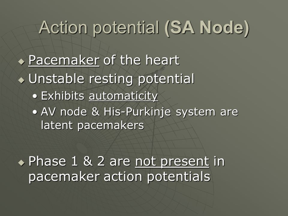 Action potential (SA Node)  Pacemaker of the heart  Unstable resting potential Exhibits automaticityExhibits automaticity AV node & His-Purkinje system are latent pacemakersAV node & His-Purkinje system are latent pacemakers  Phase 1 & 2 are not present in pacemaker action potentials