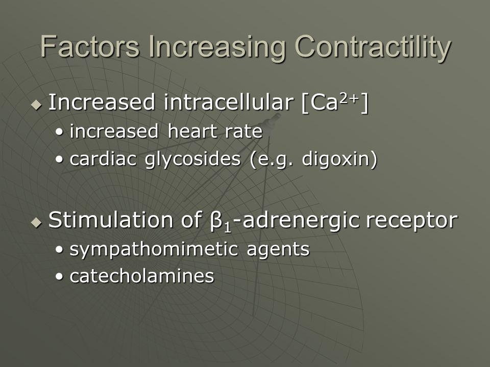 Factors Increasing Contractility  Increased intracellular [Ca 2+ ] increased heart rateincreased heart rate cardiac glycosides (e.g. digoxin)cardiac