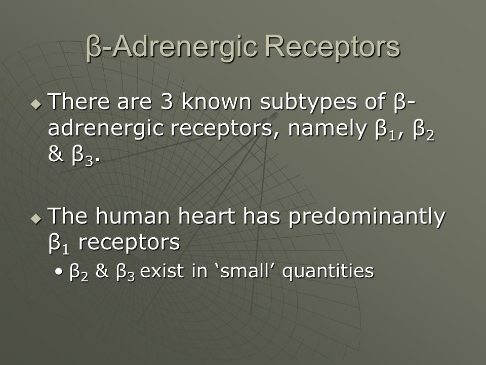 β-Adrenergic Receptors  There are 3 known subtypes of β- adrenergic receptors, namely β 1, β 2 & β 3.
