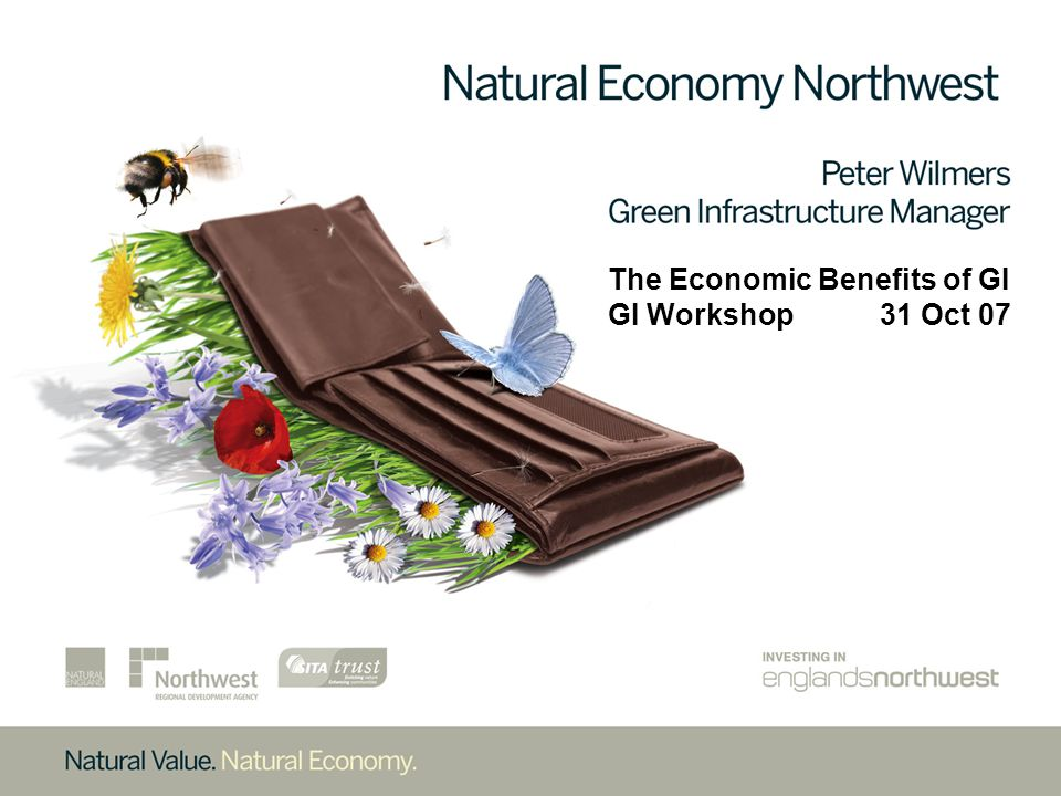 The Two Parts to my Presentation: # Brief explanation of what the Natural Economy NW Programme is and our progress to date, # Summary of the findings emerging from the draft Ecotec report on the Economic Benefits of Investing in GI, commissioned by NENW.