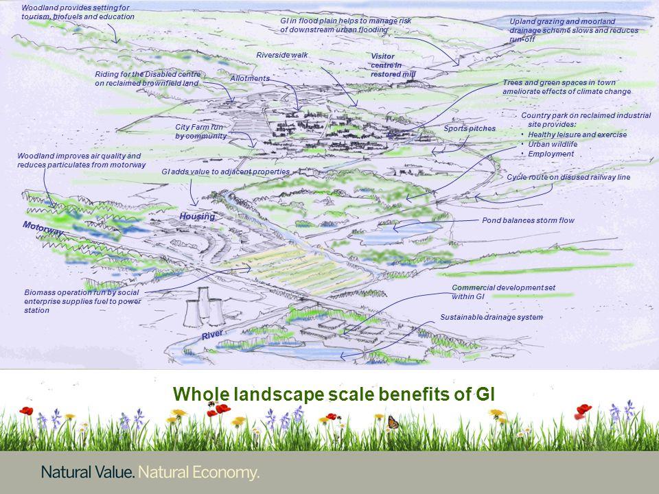 Commercial development set within GI Pond balances storm flow Whole landscape scale benefits of GI Sustainable drainage system Motorway River Housing