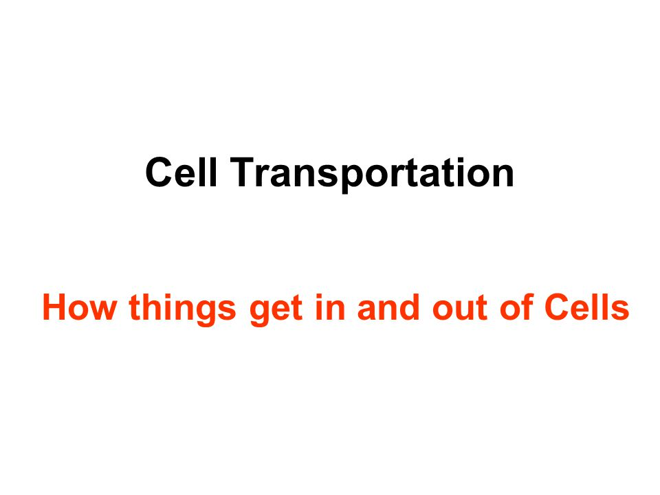 Cell Transportation How things get in and out of Cells