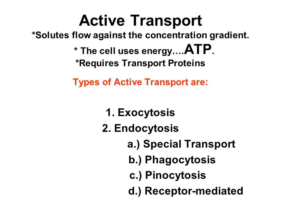 Active Transport *Solutes flow against the concentration gradient.