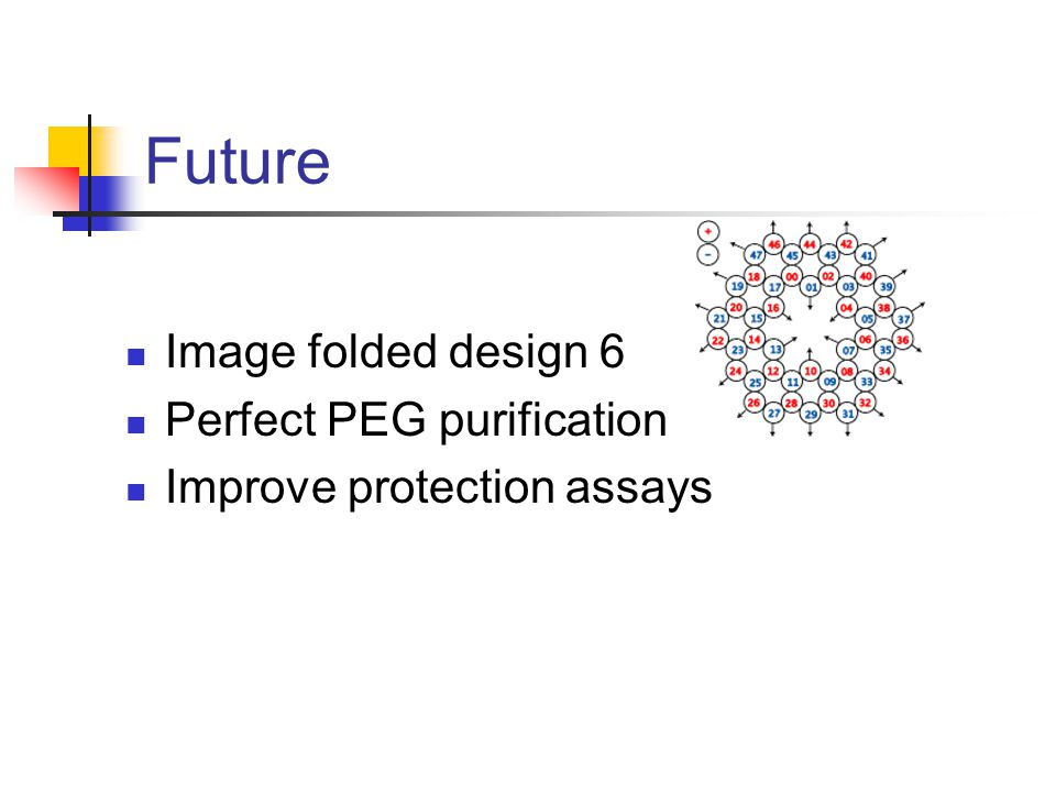 Future Image folded design 6 Perfect PEG purification Improve protection assays