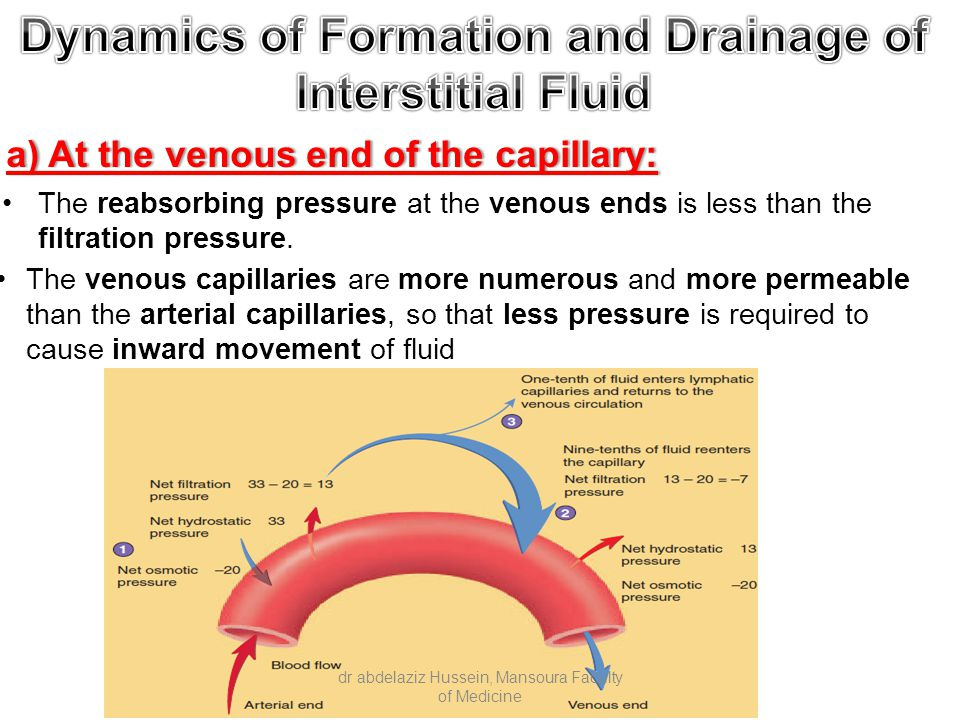 a) At the venous end of the capillary:a) At the venous end of the capillary: The venous capillaries are more numerous and more permeable than the arterial capillaries, so that less pressure is required to cause inward movement of fluid The reabsorbing pressure at the venous ends is less than the filtration pressure.