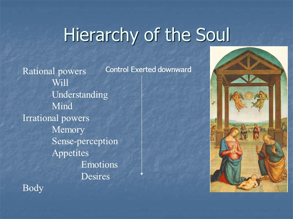 Hierarchy of the Soul Rational powers Will Understanding Mind Irrational powers Memory Sense-perception Appetites Emotions Desires Body Control Exerte