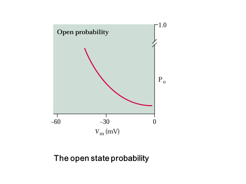The open state probability