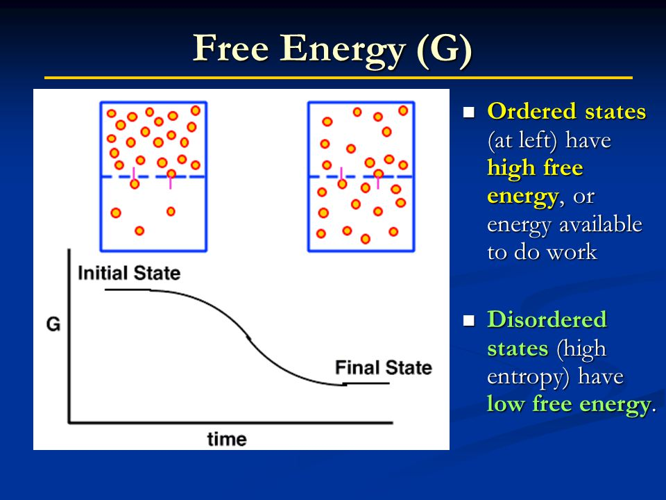 Free Energy (G) Ordered states (at left) have high free energy, or energy available to do work Ordered states (at left) have high free energy, or energy available to do work Disordered states (high entropy) have low free energy.