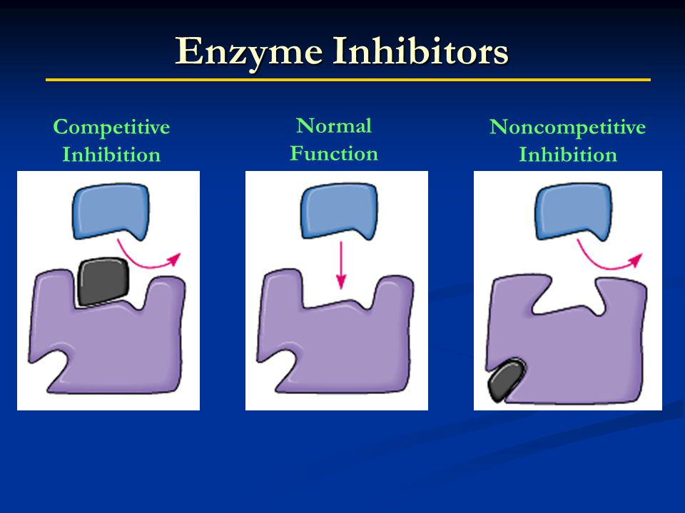 Enzyme Inhibitors Normal Function Noncompetitive Inhibition Competitive Inhibition