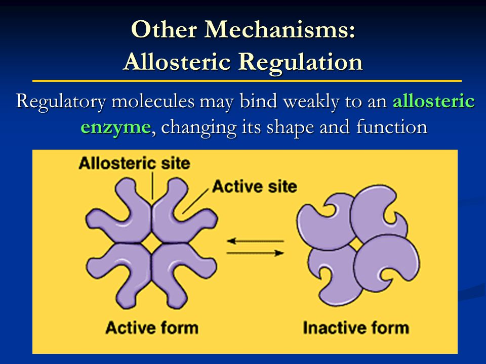 Other Mechanisms: Allosteric Regulation Regulatory molecules may bind weakly to an allosteric enzyme, changing its shape and function