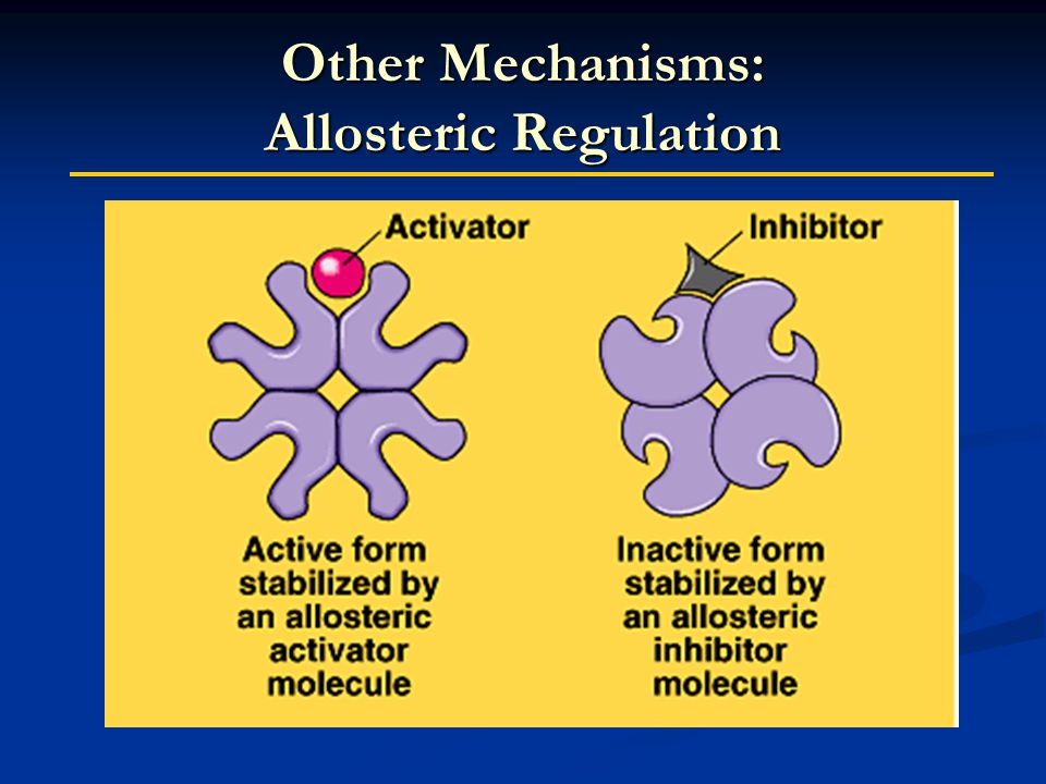 Other Mechanisms: Allosteric Regulation