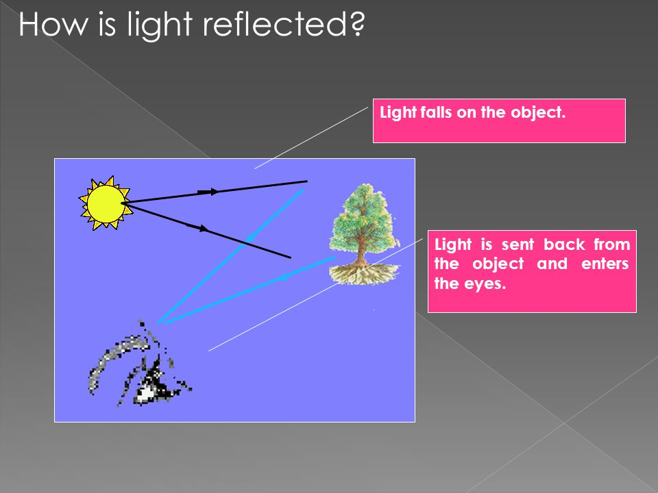 Light is sent back from the object and enters the eyes.