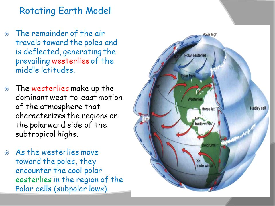  The remainder of the air travels toward the poles and is deflected, generating the prevailing westerlies of the middle latitudes.  The westerlies m