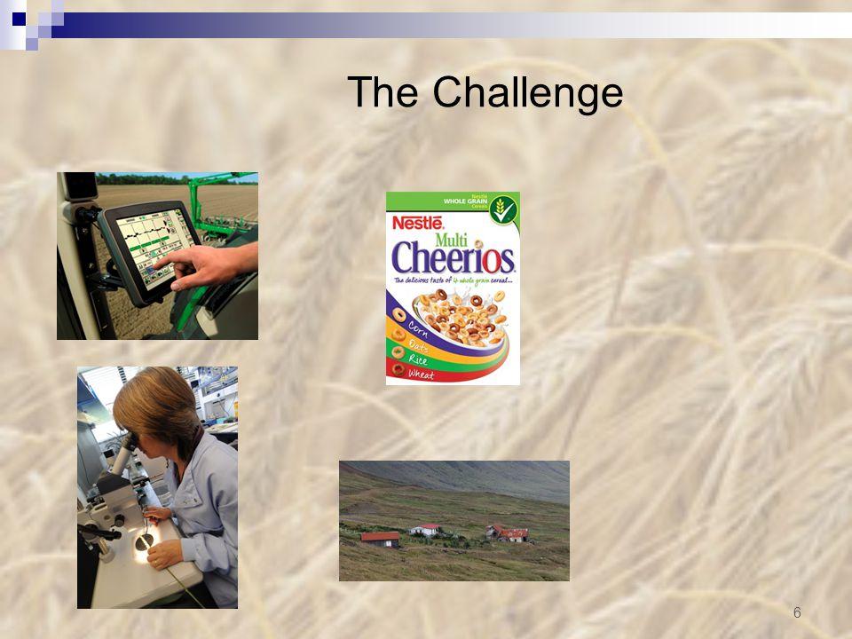 The Challenge 6