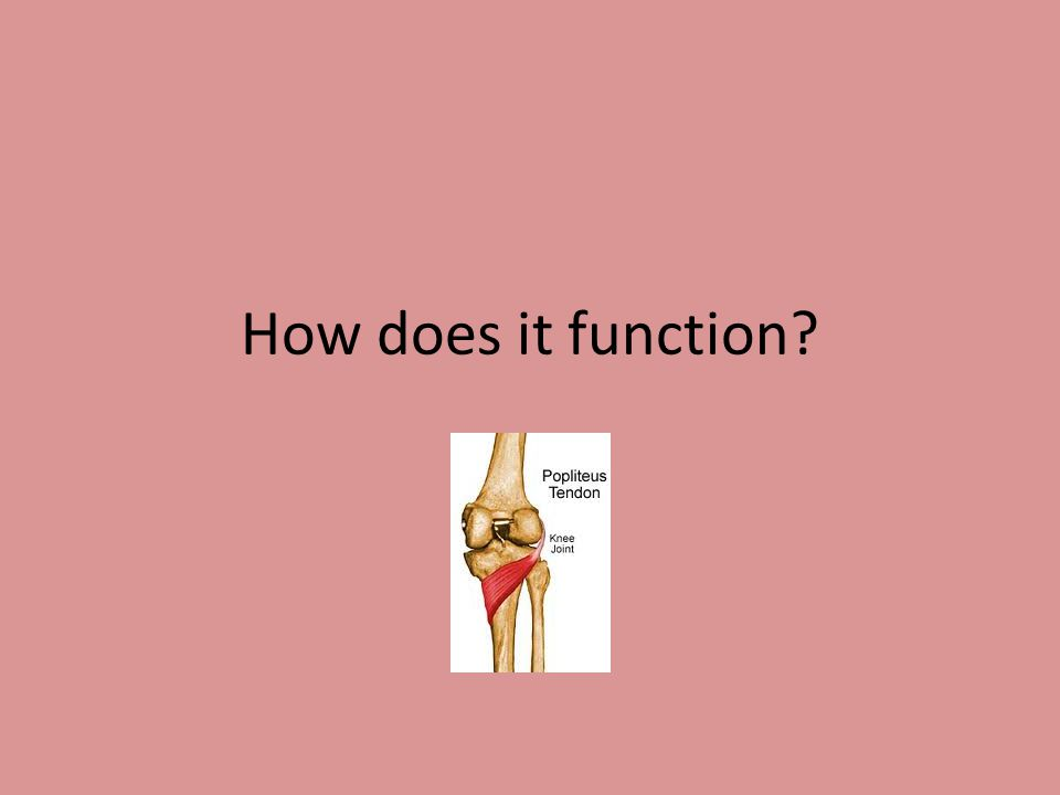 How does it function