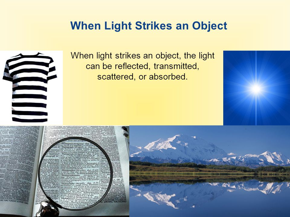 When Light Strikes an Object When light strikes an object, the light can be reflected, transmitted, scattered, or absorbed.