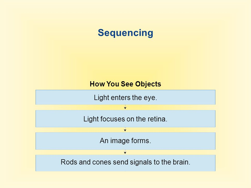 Sequencing How You See Objects Light enters the eye.
