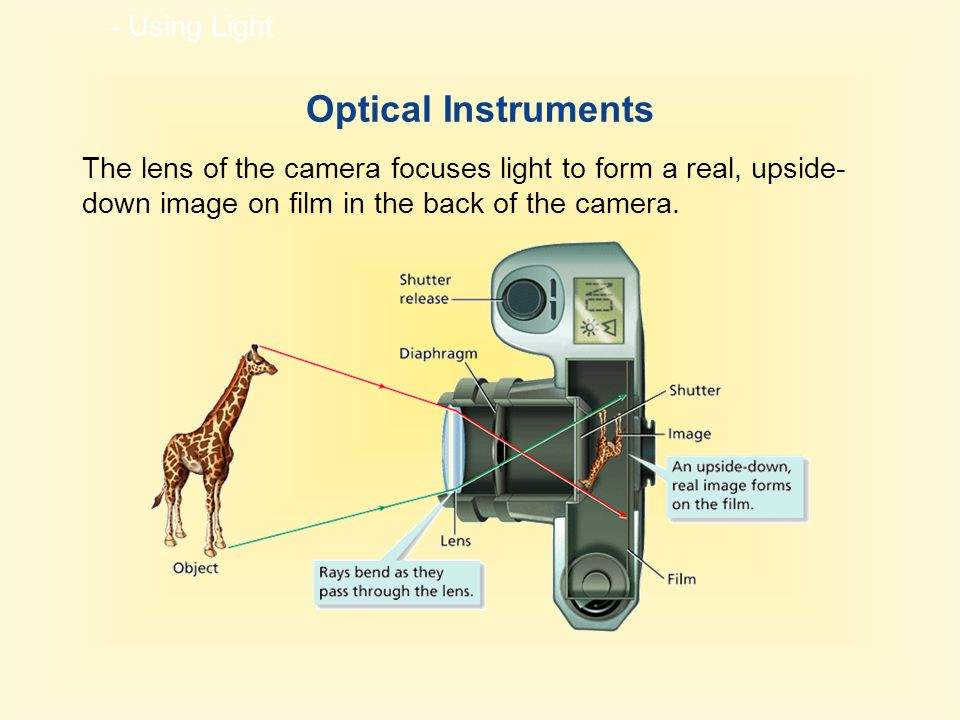- Using Light Optical Instruments The lens of the camera focuses light to form a real, upside- down image on film in the back of the camera.