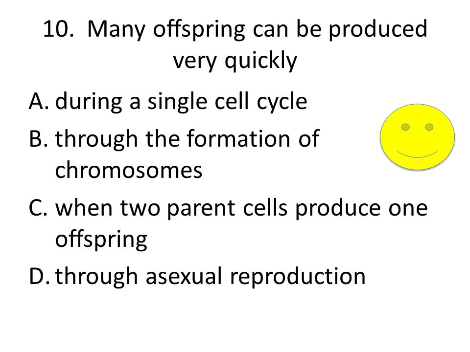 10. Many offspring can be produced very quickly A.during a single cell cycle B.through the formation of chromosomes C.when two parent cells produce on