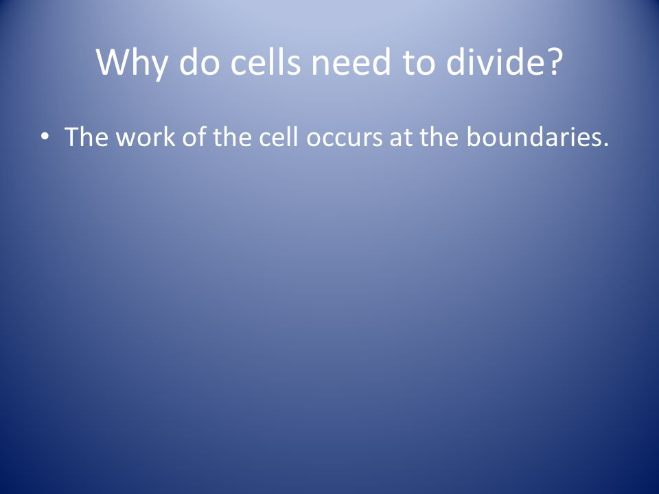 The work of the cell occurs at the boundaries.