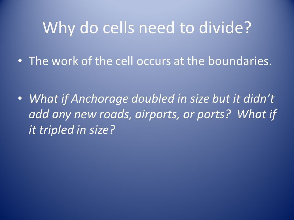 Why do cells need to divide. The work of the cell occurs at the boundaries.