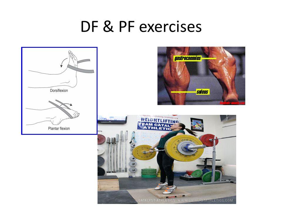 DF & PF exercises
