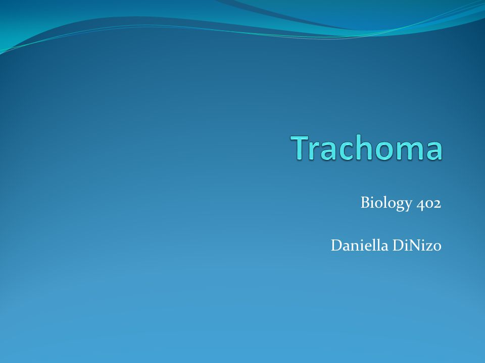 Biology 402 Daniella DiNizo